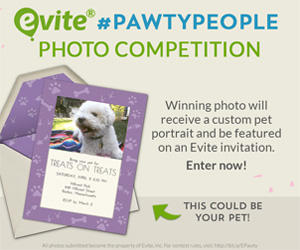 Pawty People Photo Contest