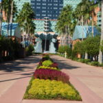 Reminiscing over the Walt Disney World Swan and Dolphin Resort